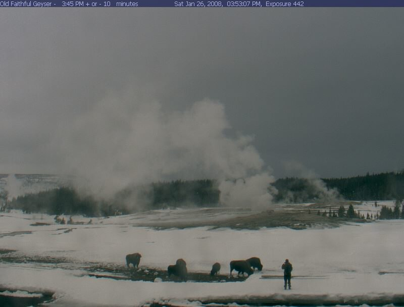 Yellowstone National Park webcams